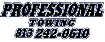 professional-logo-1